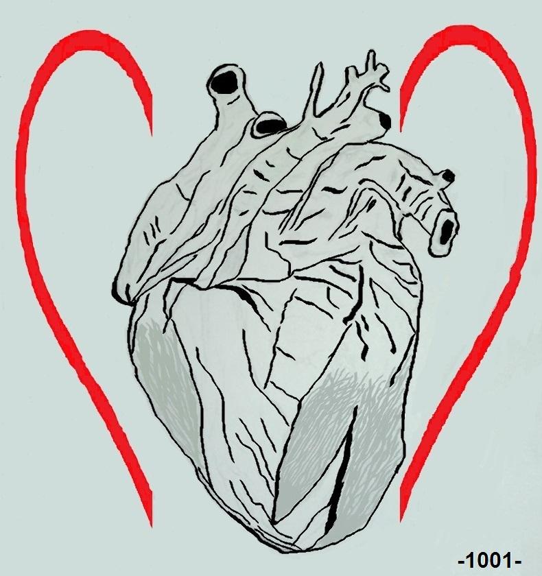 O que se Guarda no Coração