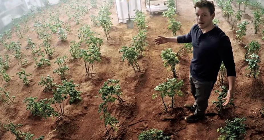 Batatas de Marte: o planeta em que o pacote de Ruffles terá mais batatas do que ar